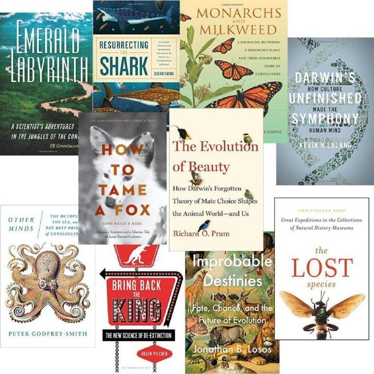 Best Finance Books 2017