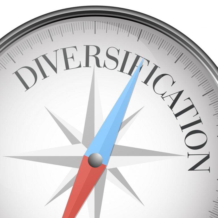 Diverse Portfolio Meaning