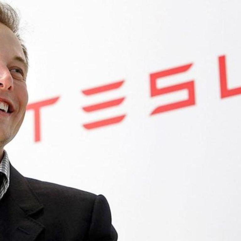 Elon Musk Stimulus Package